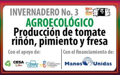 CESA hacia un modelo de gestión sostenible en la granja de producción de la Red de Mujeres de Paute, con enfoque agroecológico
